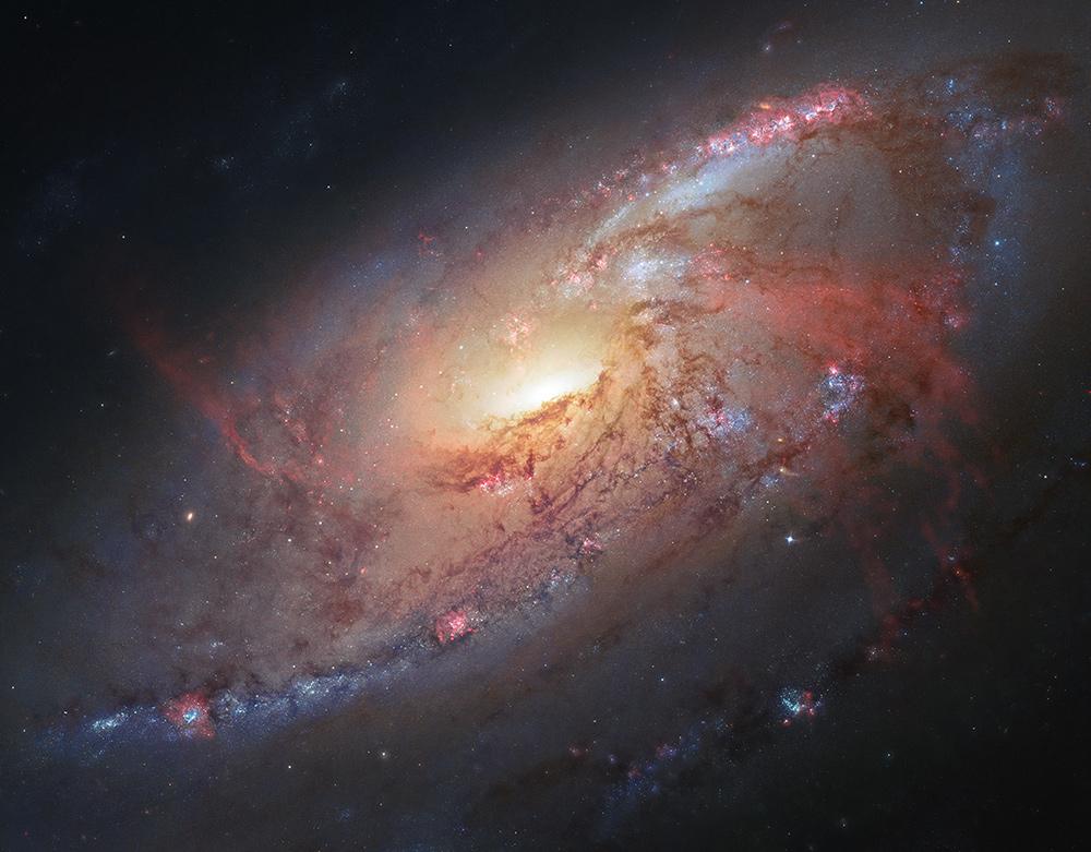 Galaxy M106