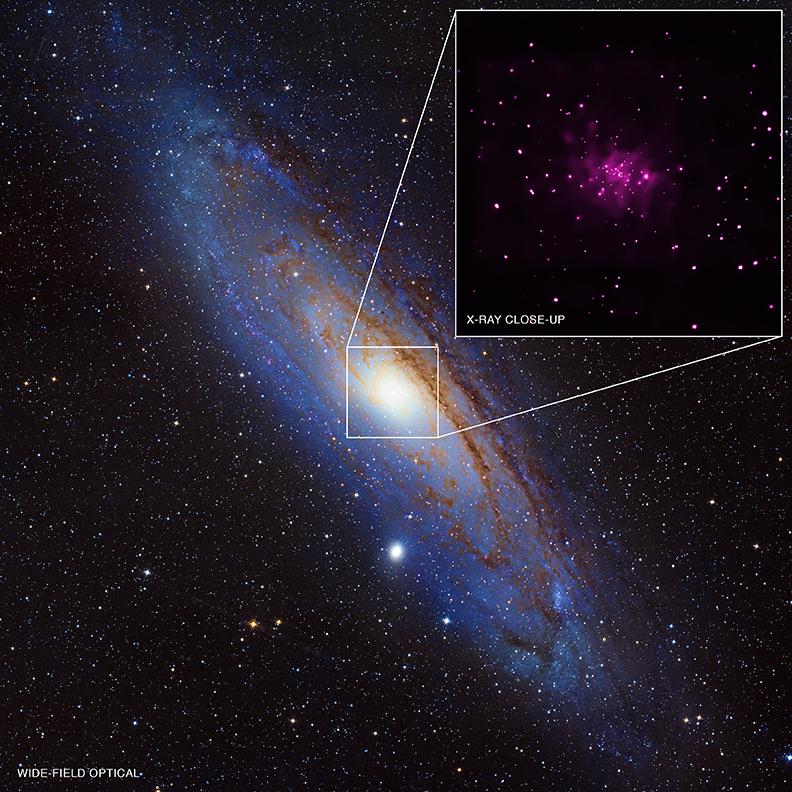 Chandra's Andromeda M31