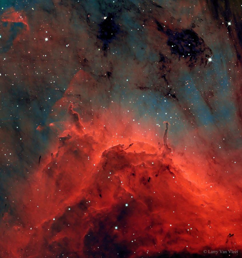 Pelican Nebula - APOD