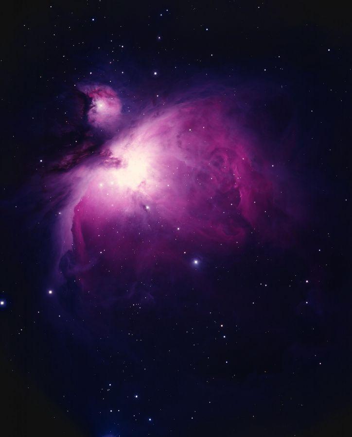Orion Nebula - M42 - Bill Schoening
